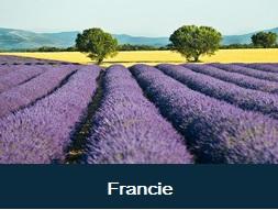 Nejlepší poznávací  zájezdy do Francie - Pravnce Paříž